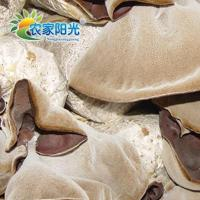 Buy cheap NEX008-black fungus (white back) from wholesalers