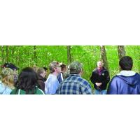 Buy cheap Foresters Working Toward Your Goals from wholesalers