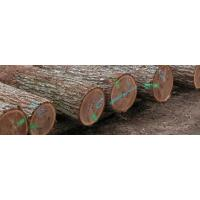 Wholesale Logs & Veneer from china suppliers