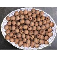 Wholesale lotus seeds without cor… from china suppliers