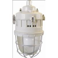 Wholesale Series of anti-explosion lamps Flame-proof lamp Series BGD52(Maintenance-free energy-saving EDL electrodeless lamp)ⅡC、DIPA20 from china suppliers