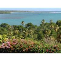 Wholesale Land Main >For Sale >5 Acres Beach Front - Vieux Fort from china suppliers