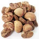 China Betel Nuts on sale
