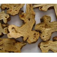 Wholesale Atractylodes macrocephala Koidz from china suppliers