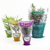 Wholesale Sleeve for potted plants from china suppliers