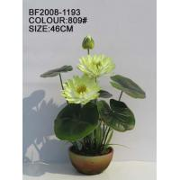 Wholesale Lotus BF2008-1193 from china suppliers