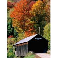 Autumn Leaves Surrounding Cilley Covered Bridge, Vermont - Photographic Print