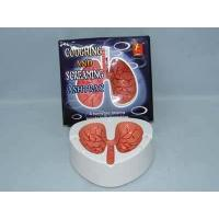 Wholesale Coughing and Screaming Ashtray from china suppliers