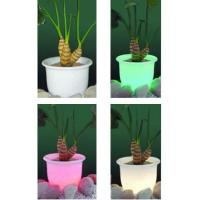Wholesale LED Flower Pot Art. FP607 from china suppliers