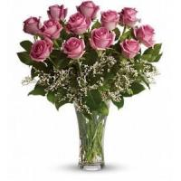 Wholesale Make Me Blush - Dozen Long Stemmed Pink Roses [T4-1A] from china suppliers
