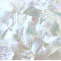 Mother of Pearl Shell Tile