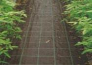 Wholesale Weed control mat from china suppliers