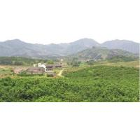 Wholesale FARM NATURAL ENVIRONMENT from china suppliers
