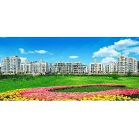 Wholesale zhouyu Real Estate from china suppliers