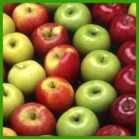 Wholesale About Apples BACKGROUND from china suppliers