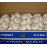 Wholesale 1kgX10  carton from china suppliers