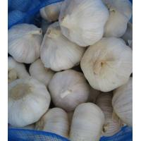 Wholesale 10kg mesh bag from china suppliers
