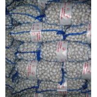 Wholesale 20kg mesh bag from china suppliers