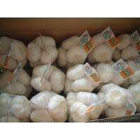 Wholesale 500g mesh bag from china suppliers