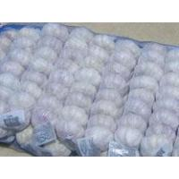 Wholesale 500gX10 mesh bag from china suppliers