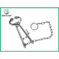 Bull Holder with Chain