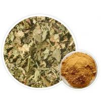 Wholesale Bilberry Leaves Extract(Bilberry Le.. from china suppliers