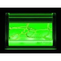 Wholesale Illuminated Ant Farm Gel Colony by Uncle Milton pro2109 from china suppliers