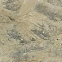 Wholesale Imported Apollo Marble from china suppliers