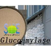 Wholesale Glucoamylase from china suppliers