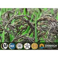 Wholesale Black rice extract| anthocyanin|C3G| black rice protein| resistant starch from china suppliers