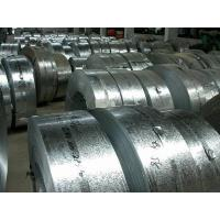 Q235 Various Width Steel Strip, Regulard Spangle Galvanized Carbon Steel Strip