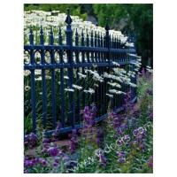 Steel fence Wrought Iron Hand Forged Steel Fence SY-FR-M912