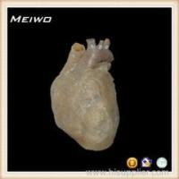 Wholesale heart shape plasticized bodies from china suppliers