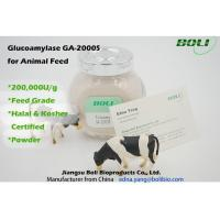 Buy cheap High Activity Biological Enzymes 200000 U / g , Animal Feed Amyloglucosidase Enzyme from wholesalers