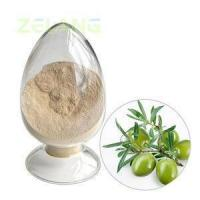 Wholesale Oleuropein 20% from china suppliers