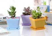 Wholesale Nusery pots small square pot 6367 from china suppliers