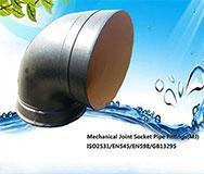 Mechanical Pipe Fittings