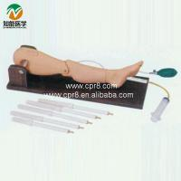 Wholesale Bone puncture and femoral vein puncture training model from china suppliers