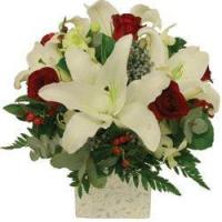 Wholesale Christmas Holiday Lilies from china suppliers
