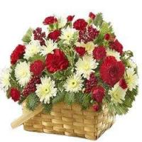 Wholesale Christmas A Flower Basket from Fairyland from china suppliers