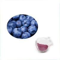 Wholesale wholesale European Bilberries Fruit Extract Anthocyanidins 10% from china suppliers