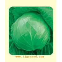 Wholesale Cauliflower Hua Bao from china suppliers
