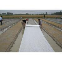 Wholesale 17-30 gsm UV Protected PP Spunbond Nonwoven Fabrics for Agriculture and Crop Protection from china suppliers