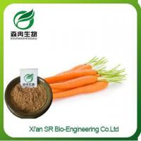 Wholesale Carrot Extract, Pure Organic Carrot Powder, Wholesale Vegetable Extract Carrot Juice Powder from china suppliers