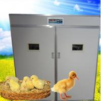 China chicken incubator for sale(2816) on sale