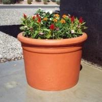 Wholesale Plastic Planters Plastic Straight Sided Cylinder from china suppliers