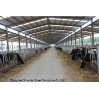 Prefabricated Steel Structure Cow Cattle Farm House