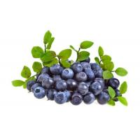 Wholesale Standardized Extract Strong Antioxidant Blueberry Extract Powder For Food Supplement And Cosmetics from china suppliers