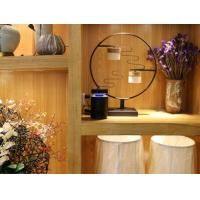 Wholesale Electric Anti Mosquito Lamp Indoor Electronic Bug Zapper from china suppliers