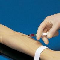 Buy cheap Anterial and Venous Patient Training Arm for Aterial Stick Exerc[S263] from wholesalers